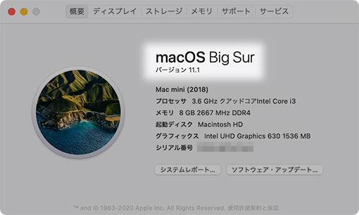 macOS Big Sur このMacについて