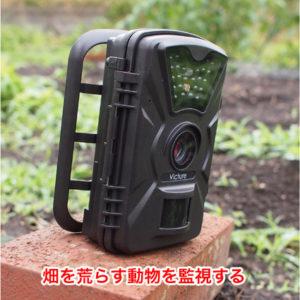 中華の8千円で買えるトレイルカメラ Victure