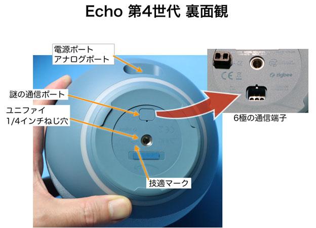 Echo 第4世代 裏面観