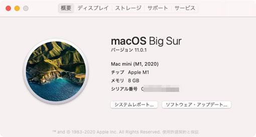 このMacについて Mac mini M1 2020
